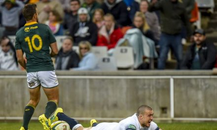 Springboks beat England 23-12 and clinch series