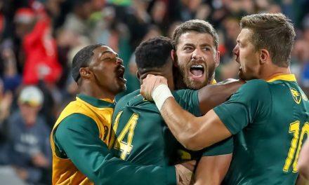 Springboks live score: South Africa vs England – follow live updates here!