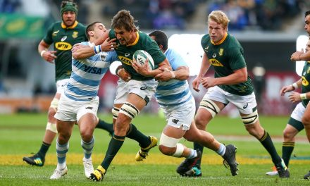 Argentina vs Springboks: Preview, team news, kick off and live stream