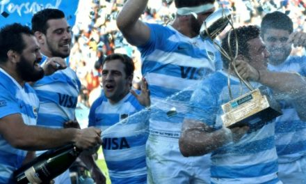 Springboks red-faced after Pumas defeat