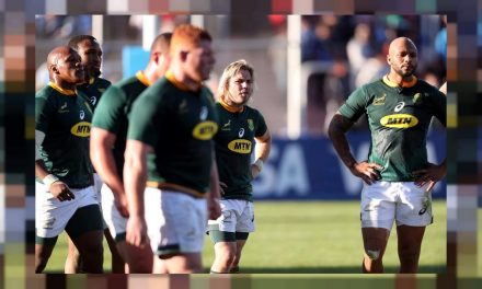 Springboks seek more clinical edge against wounded Wallabies