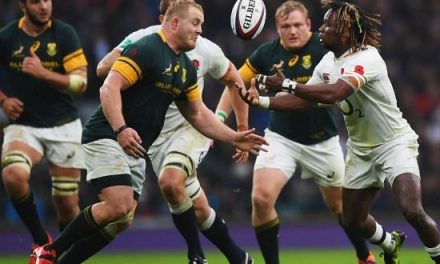 Springboks Recall Koch, Include Uncapped Nel For Tests