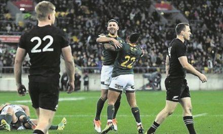 Rassie Erasmus: South Africa back on track after shocking All Blacks