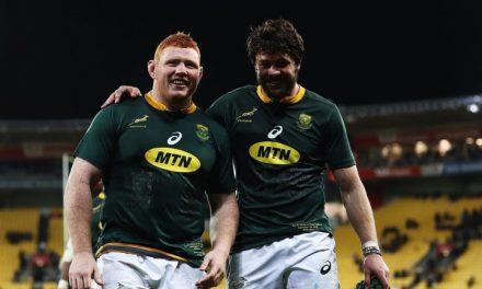 Stuart Barnes' talking points: Springboks and Pumas impress