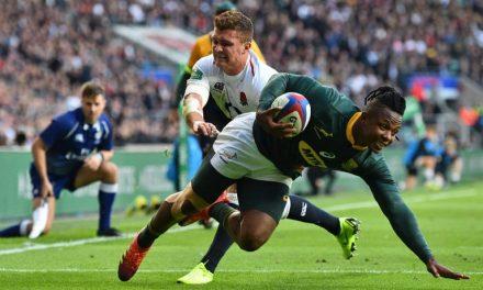 International rugby result: England 12-11 Springboks