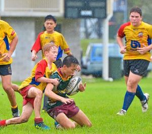 Huge boost for rugby union in Gladstone   Gladstone Observer