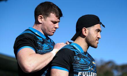 Edinburgh raid Super Rugby for their latest signing