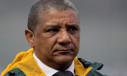 Allister Coetzee leaves post as Springboks coach