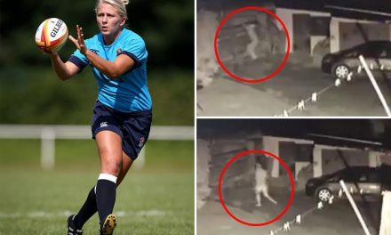 Bungling burglar is chased out of home by female ex-England rugby star and her teammates