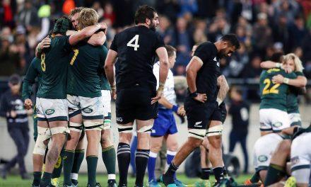 All Blacks beware: Springboks returning to happy hunting ground in Wellington