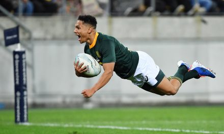 How the Springboks players rated in Wellington