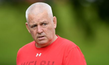 The 10 minutes of Wales rugby that haunt Warren Gatland most and how he can learn lesson to win World Cup – Gwyn Jones – Wales Online