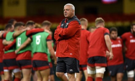 This is the 31-man Wales Rugby World Cup squad now likely to be picked on Sunday – Wales Online