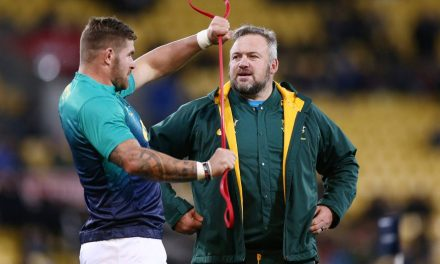 Rugby World Cup: South Africa coach denies Springboks doping crisis | Stuff.co.nz