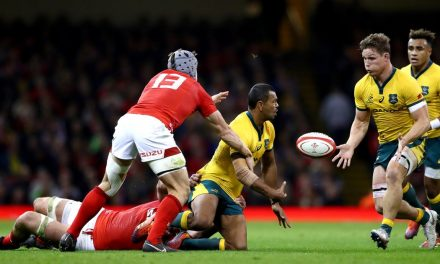 The Wales v Australia Rugby World Cup exact scoreline predicted: Our experts give their verdicts – Wales Online