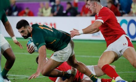 Wales v South Africa: Handre Pollard boots Springboks into Rugby World Cup final | Stuff.co.nz
