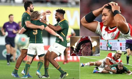 Japan 3-26 South Africa: Springboks set up Rugby World Cup semi-final with Wales | Daily Mail Online