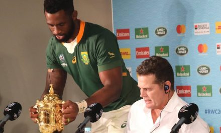 Rugby World Cup final 2019: Springboks coach Rassie Erasmus says pressure is 'having a relative murdered'  | Stuff.co.nz