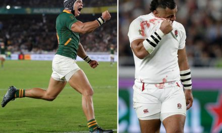 England 12 South Africa 32: World Cup final heartache for Red Rose after being bullied by super Springboks