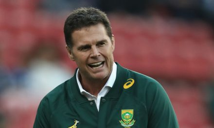 How will the Springboks handle the weight of expectations?