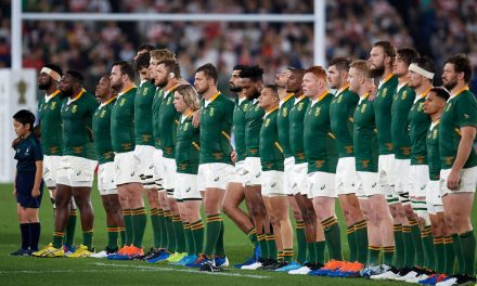Springboks kick-off Lions preparations with three days of 'alignment' activities in Gauteng
